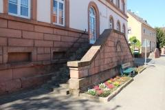 2aVerschönerung-Herbstpflanzung-KiTa-2019-04-20-Frühjahrsaspekt1